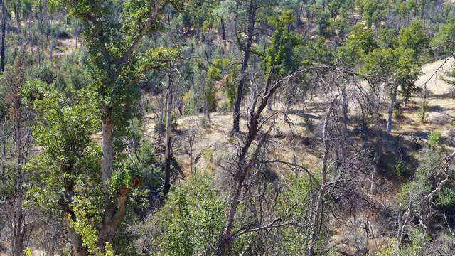 20+- Acres Off Lower Coal Pit Rd, Igo, CA 96047 (#19-5587) :: 530 Realty Group