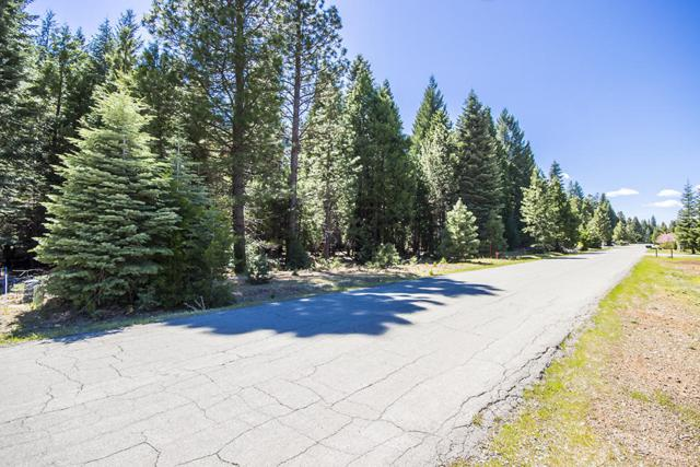 Nehemiah Dr, Shingletown, CA 96088 (#19-575) :: The Doug Juenke Home Selling Team