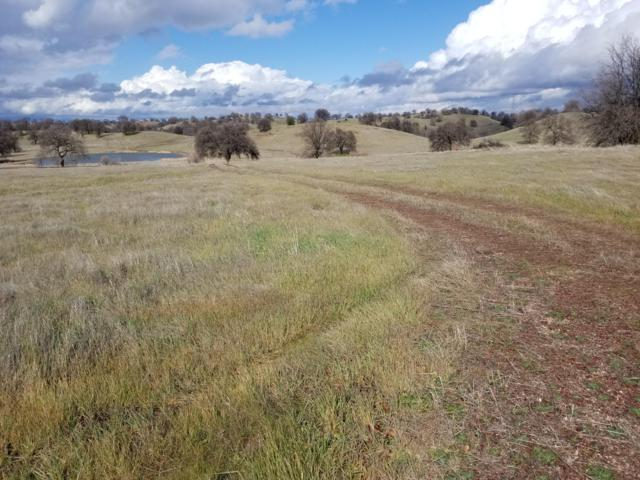 Lot 2 Sunset Hills Dr, Cottonwood, CA 96022 (#19-576) :: The Doug Juenke Home Selling Team