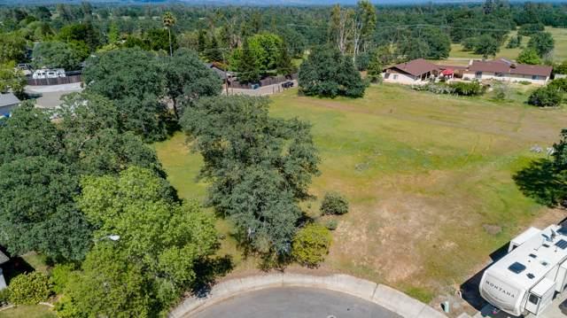19490 Vista Del Monte Ct, Redding, CA 96003 (#19-5857) :: Wise House Realty