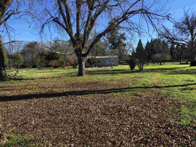 595 Rio Vista Ave, Red Bluff, CA 96080 (#19-59) :: 530 Realty Group