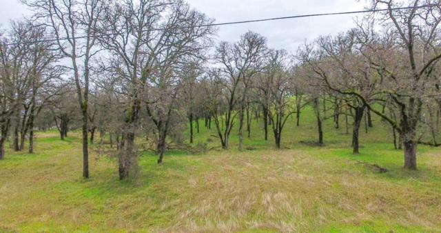 Palo Cedro Drive, Palo Cedro, CA 96073 (#19-597) :: 530 Realty Group