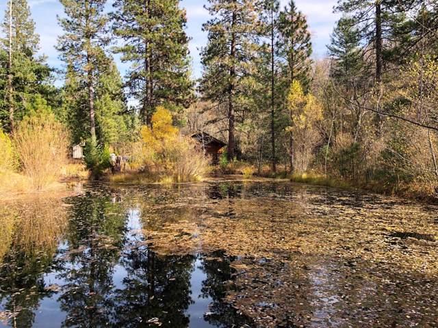 32850 Ponderosa Way, Paynes Creek, CA 96075 (#19-6016) :: Waterman Real Estate