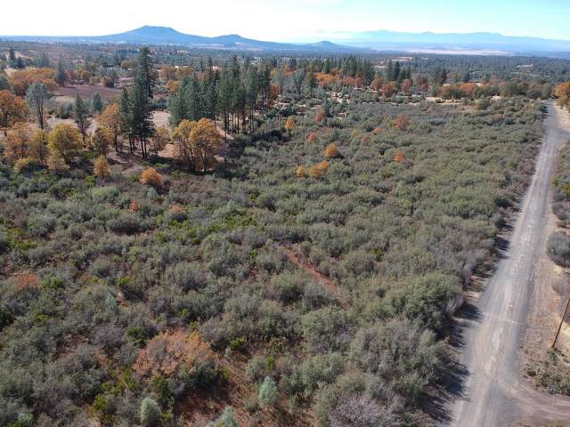 Battleview Drive, Manton, CA 96059 (#19-6211) :: Wise House Realty
