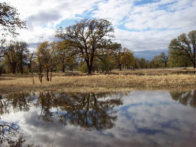 16300 Maynard Rd, Red Bluff, CA 96080 (#19-6260) :: Waterman Real Estate