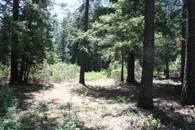 Lot 26 Sabrina Lane, Shingletown, CA 96088 (#19-982) :: 530 Realty Group
