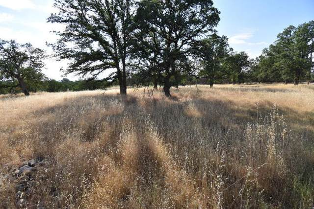 Via Linda Dr, Palo Cedro, CA 96073 (#20-1120) :: Josh Barker Real Estate Advisors