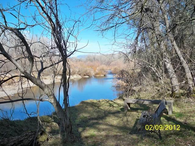 Lilla Lane, Palo Cedro, CA 96073 (#20-1263) :: Josh Barker Real Estate Advisors