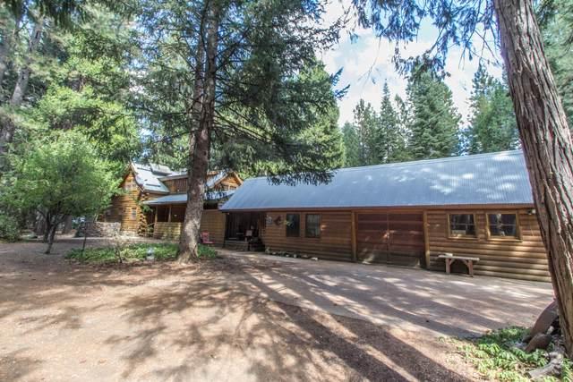 33795 Meteorite Way, Shingletown, CA 96088 (#20-1302) :: The Doug Juenke Home Selling Team