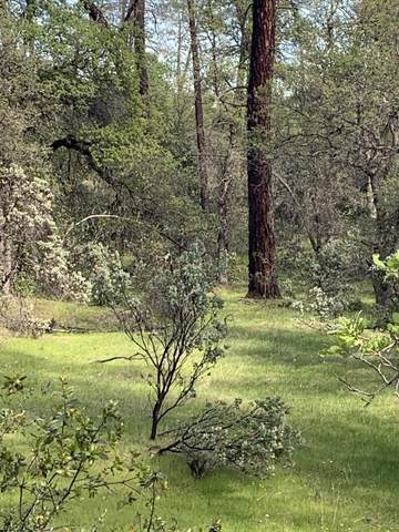 Silver King Rd. Lot 2, Redding, CA 96001 (#20-1616) :: Wise House Realty