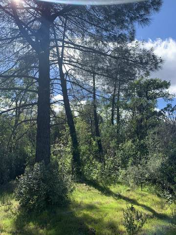 Silver King Rd. Lot 11, Redding, CA 96001 (#20-1620) :: Wise House Realty