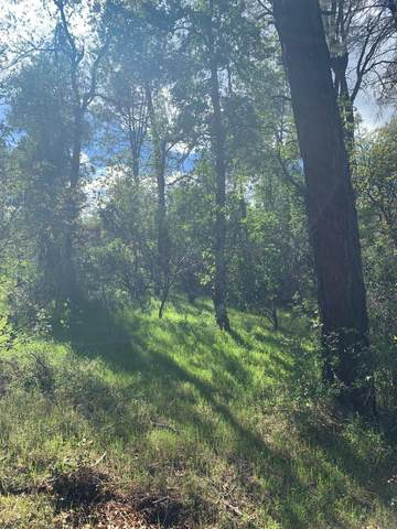 Silver King Rd. Lot 13, Redding, CA 96001 (#20-1621) :: Wise House Realty