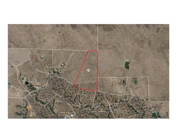 000 Janine Way, Corning, CA 96021 (#20-1822) :: Waterman Real Estate