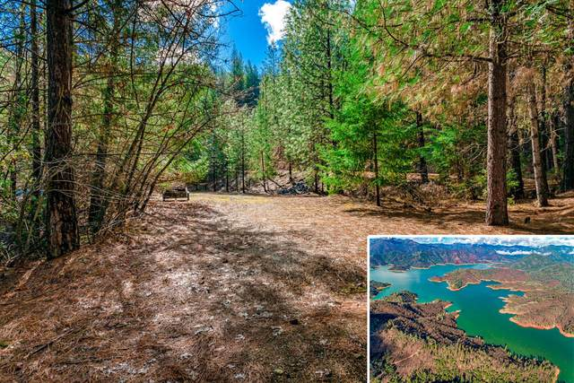 Ground Squirrel, Lakehead, CA 96051 (#20-2052) :: Waterman Real Estate