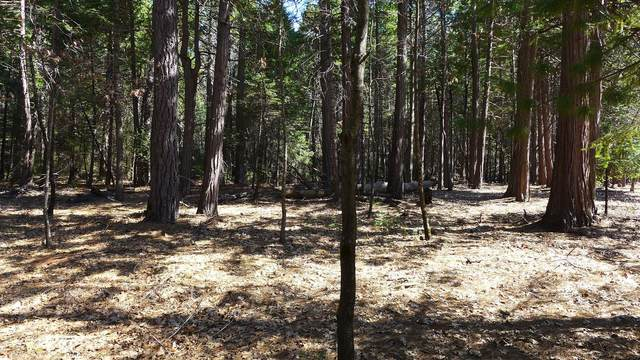 4.5 +- Ac Wilson Hill Road, Shingletown, CA 96088 (#20-2111) :: Waterman Real Estate