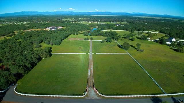Skylark, Palo Cedro, CA 96073 (#20-2165) :: Waterman Real Estate