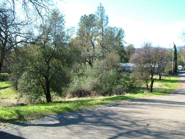 Chico, Shasta Lake, CA 96019 (#20-228) :: Wise House Realty