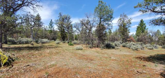 Lot 8 Chickasaw Ct., Fall River Mills, CA 96028 (#20-2303) :: Real Living Real Estate Professionals, Inc.