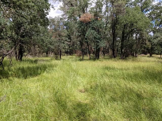 Bowman, Cottonwood, CA 96022 (#20-2468) :: Waterman Real Estate