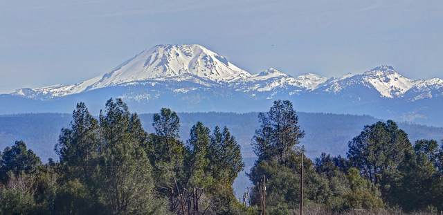 Lassen View, Redding, CA 96002 (#20-2476) :: Wise House Realty