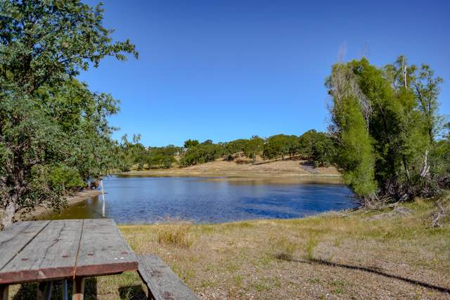 19040 Murphy Ln, Cottonwood, CA 96022 (#20-2553) :: Waterman Real Estate