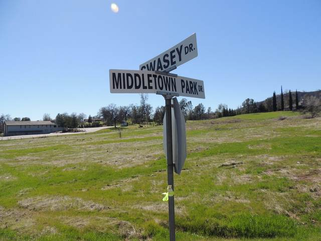 15608 Middletown Park Dr, Redding, CA 96001 (#20-2663) :: Wise House Realty