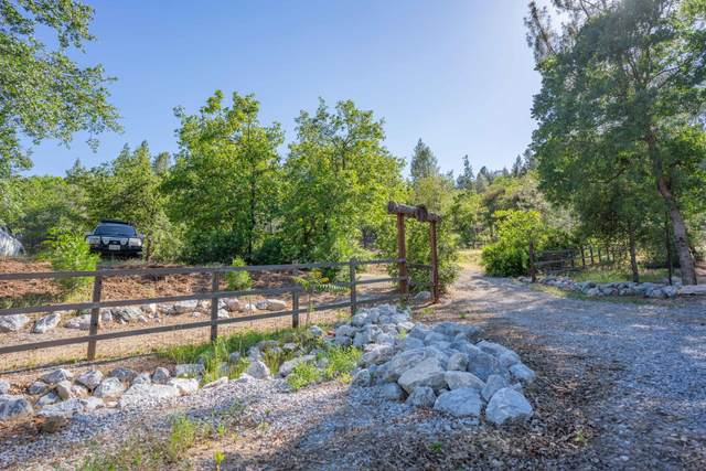 Homer, Redding, CA 96019 (#20-2768) :: Wise House Realty