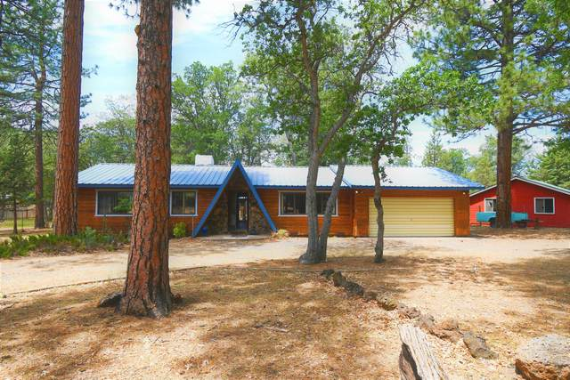 39959 Pumice Dr, Cassel, CA 96016 (#20-2850) :: Wise House Realty