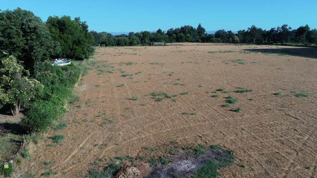 15 Acres Off Pleasant View Dr, Anderson, CA 96007 (#20-3116) :: Real Living Real Estate Professionals, Inc.