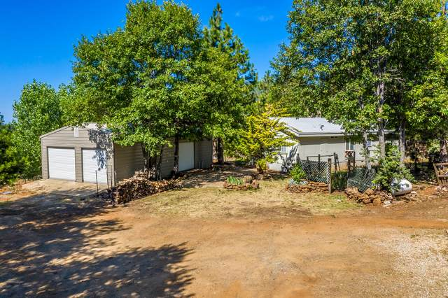 18058 Cabin Ln, Round Mountain, CA 96084 (#20-3241) :: Wise House Realty
