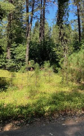 Oak Street, Lakehead, CA 96051 (#20-3263) :: Waterman Real Estate