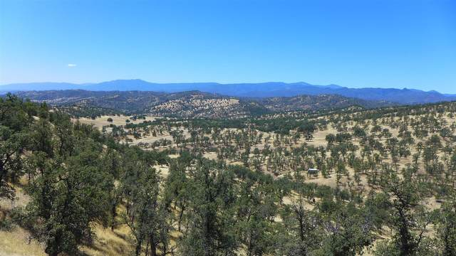 Lot 249 Fiddlers Rd, Ono, CA 96047 (#20-3268) :: Wise House Realty