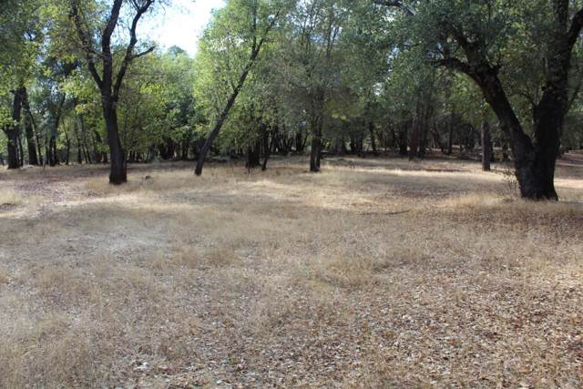 6.4 Acres Off Bear Mtn Road, Redding, CA 96003 (#20-331) :: Wise House Realty