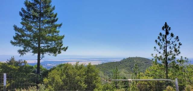 11 Raglin Ridge Rd, Red Bluff, CA 96080 (#20-3362) :: Real Living Real Estate Professionals, Inc.