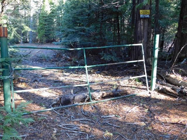 Lot #7 Emigrant Trail, Shingletown, CA 96088 (#20-347) :: Waterman Real Estate