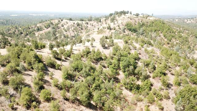 45 Acres Off Blue Sky Rd, Bella Vista, CA 96008 (#20-3695) :: Vista Real Estate