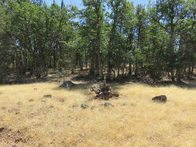 Lot 43 Mountain View Dr., Fall River Mills, CA 96028 (#20-3718) :: Wise House Realty