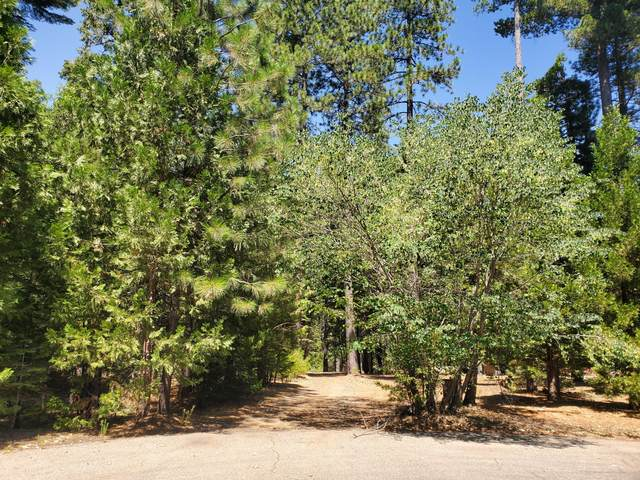 Whispering Winds Ct, Shingletown, CA 96088 (#20-3756) :: Wise House Realty