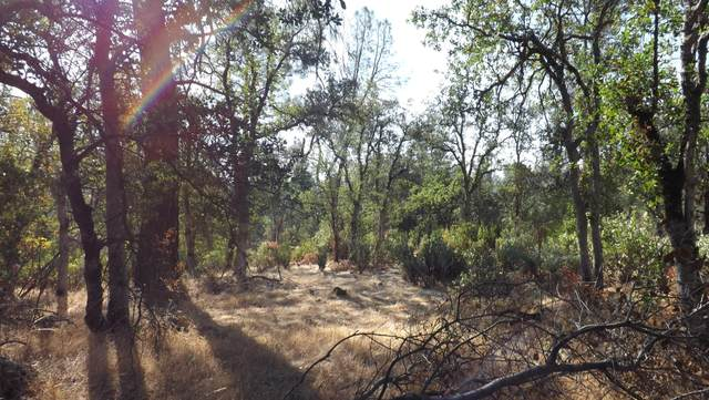 Lot 5, Silver King Road, Redding, CA 96001 (#20-3827) :: Wise House Realty