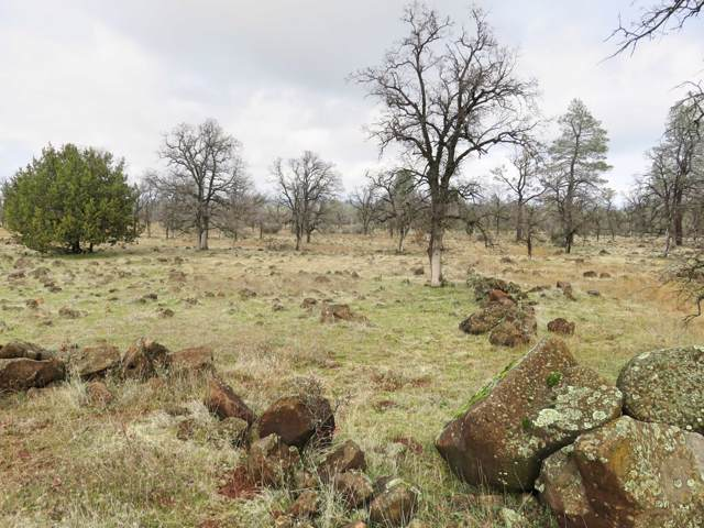 42 acres Buffalo Drive, Anderson, CA 96007 (#20-388) :: Josh Barker Real Estate Advisors