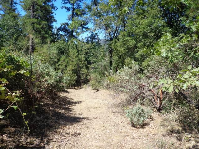 3.56 Acres Bear Rd, Lakehead, CA 96051 (#20-4216) :: Waterman Real Estate
