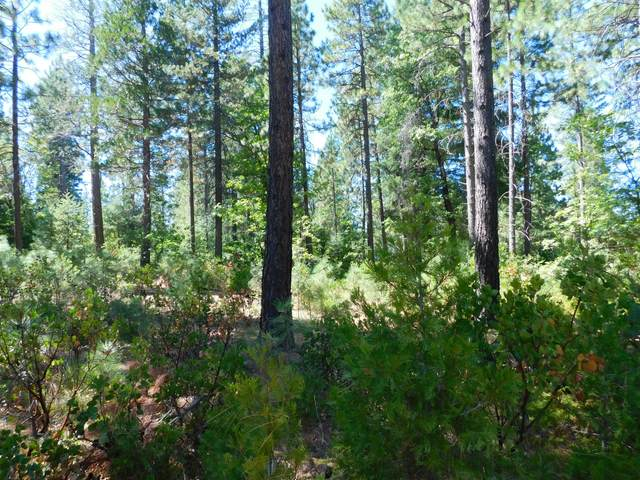 Lot 5 Hudson St., Burney, CA 96013 (#20-4306) :: Wise House Realty