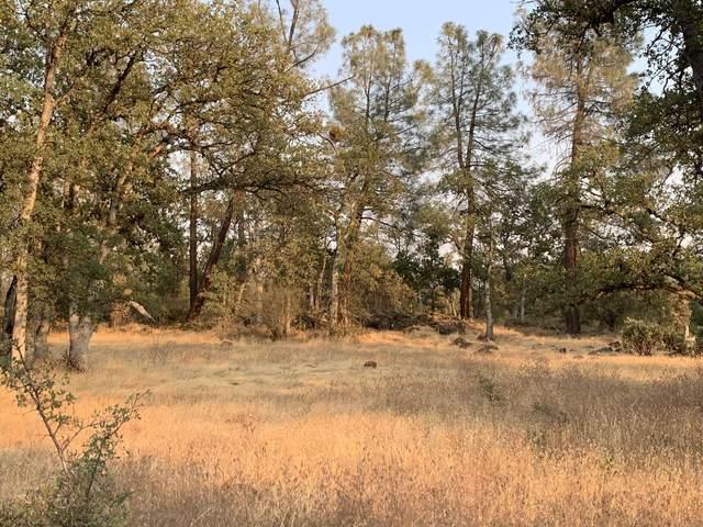 Scharsch, Shingletown, CA 96088 (#20-4452) :: Waterman Real Estate