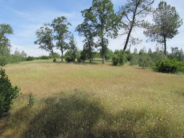 9 acres Jones Valley Trail, Redding, CA 96003 (#20-4470) :: Real Living Real Estate Professionals, Inc.
