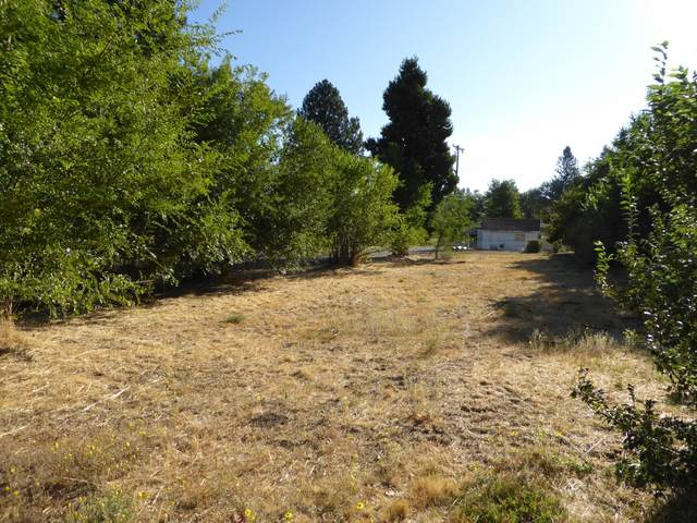 0 Shasta, Burney, CA 96013 (#20-4538) :: Real Living Real Estate Professionals, Inc.