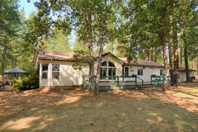 29590 Day Rd, McArthur, CA 96056 (#20-4634) :: Real Living Real Estate Professionals, Inc.