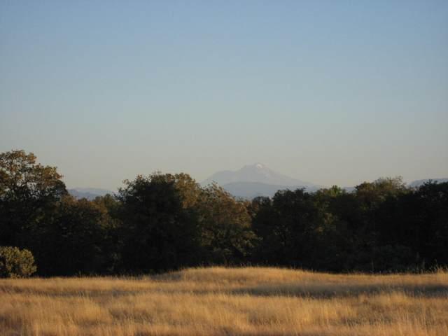Quail Ridge, Cottonwood, CA 96022 (#20-4688) :: Wise House Realty