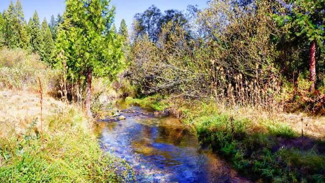 Wild Goose, Shingletown, CA 96088 (#20-4963) :: Coldwell Banker C&C Properties