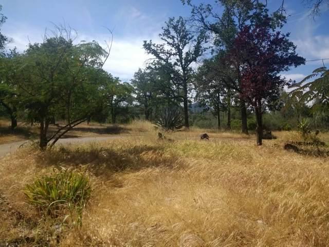 22779 East Elk Trail, Redding, CA 96003 (#20-5051) :: Wise House Realty
