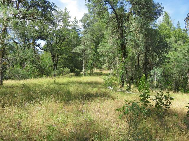 93 acres Backbone Ridge Road, Bella Vista, CA 96008 (#20-5119) :: Vista Real Estate